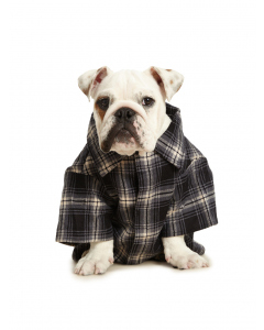 Lowes Dog Flannelette Shirt Black White Check