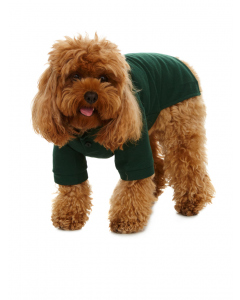 Lowes Dog Emerald Green Polo