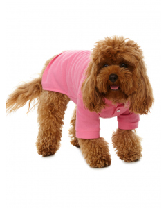 Lowes Dog Pink Polo