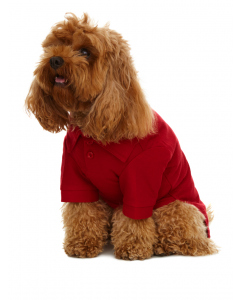 Lowes Dog Red Polo