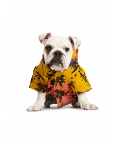 Lowes Dog Yellow Tie Dye Hoodie