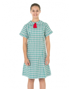 Green/Red Check Dress