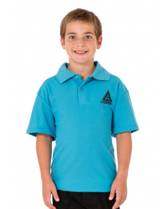 Turquoise Polo Top