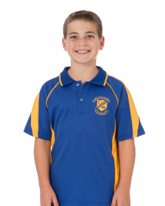 Royal & Gold Panelled Polo