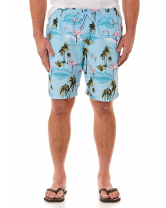 Lowes Aqua Flamingo Elastic Waist Printed Shorts | Lowes | Shorts | Lowes