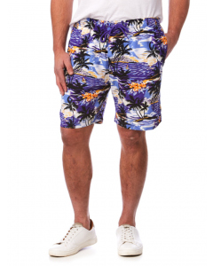 Lowes Purple Island Elastic Waist Printed Shorts | Lowes | Shorts | Lowes