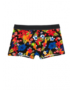 Traders Tropicana Fitted Novelty Trunks | Traders | Trunks & Boxers | Lowes